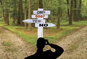 obey-god-forked-path