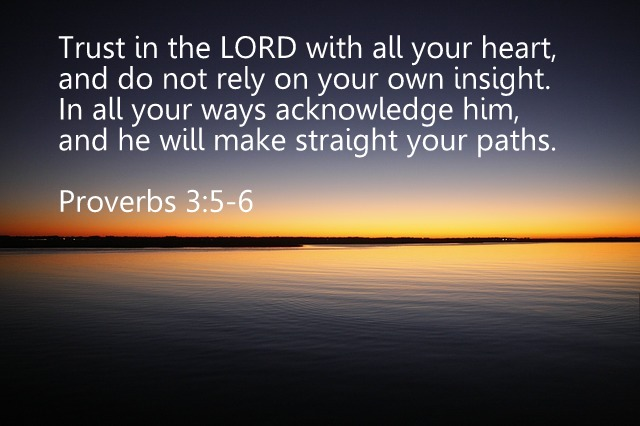 proverbs 3 5-6