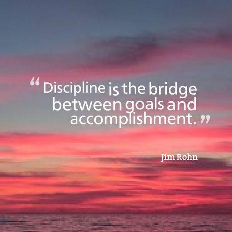 discipline bridge