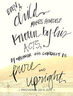 Proverbs 20 11